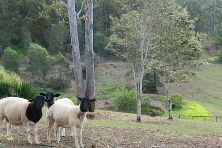 Ironbark Retreat and Farmstay