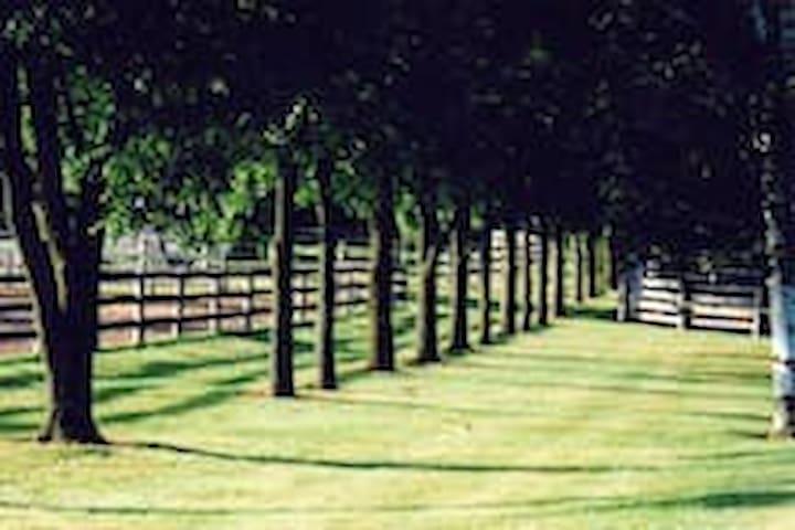 Poplar Lane Farm -  Twin Beds