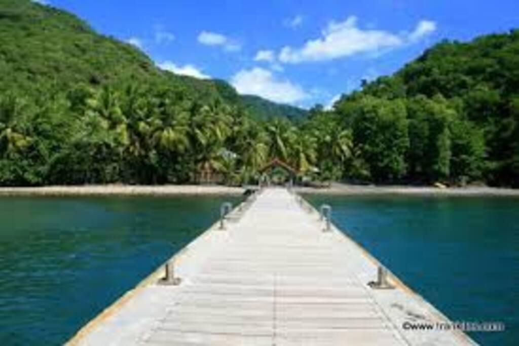 La plage et son ponton à 80 mètres