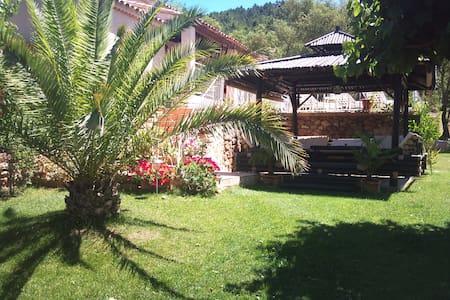 Chambre indépendante, villa avec piscine chauffée - Vidauban - Villa