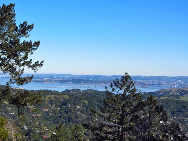 Premier Corporate Package for Retreat Compound - Mill Valley - Villa