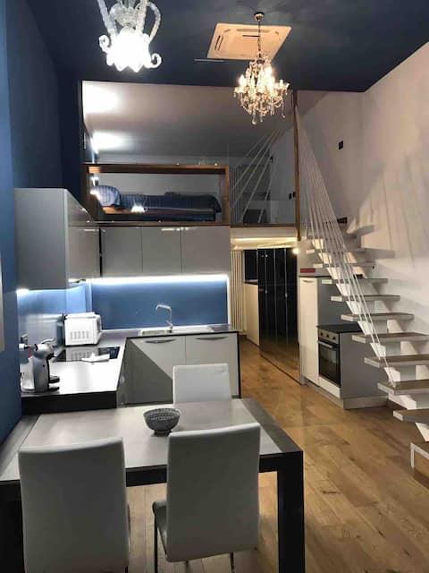 Lofty- elegant double level in città studi