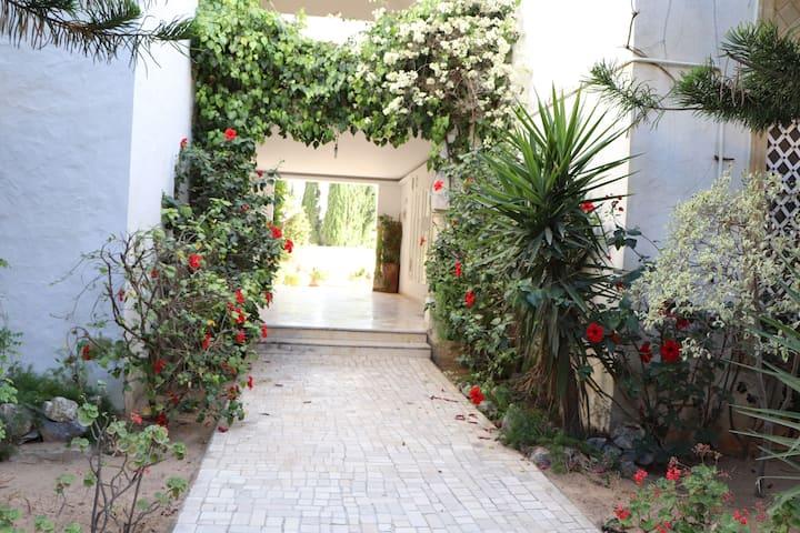 Yasmine Hammamet appartment