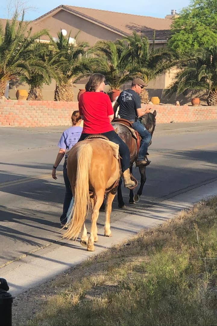 Watch for Horses in this neighborhood