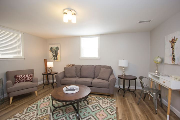 AFRICA Themed Furnished 1 BR Apt in Great Location - Sioux Falls