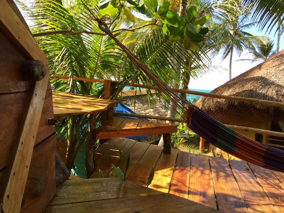From the tree house to the sea