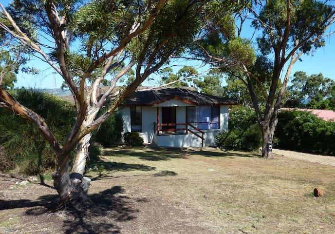 Bailey's Dog Holidays - Normanville - Normanville - House