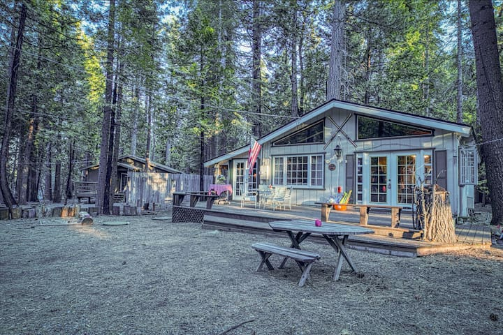 NEW LISTING! Family-friendly cabin w/wood stove, sunroom & forest views- dogs ok
