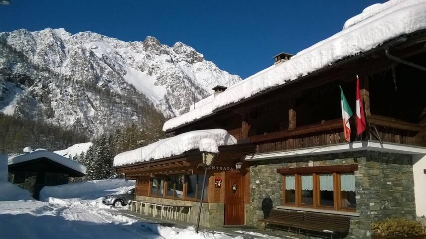 Albergo Alpino - Camera 5 - Alpe Cheggio - Other
