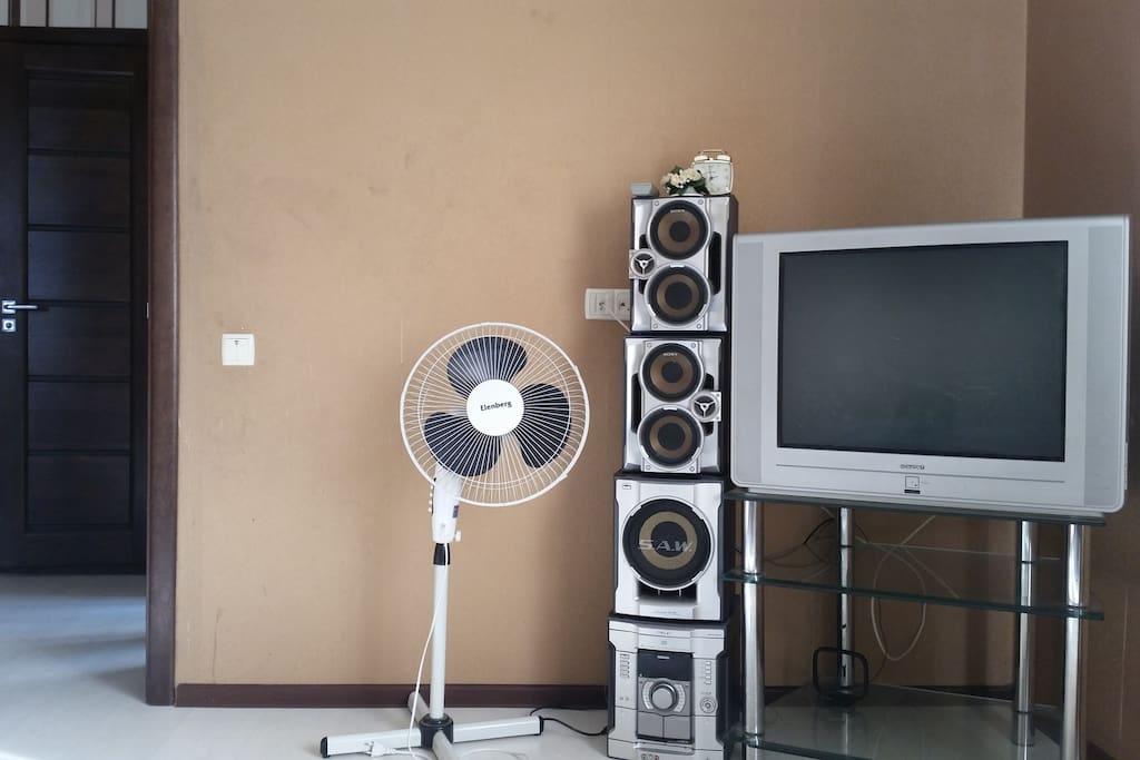 Телевизор  вентилятор в зале