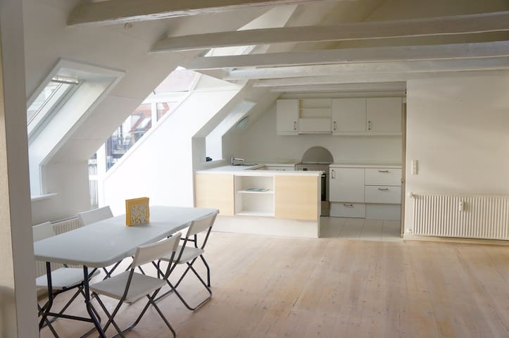 Bright private apartment in the heart of Aalborg