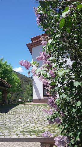 relax i benestar entre el mar i la muntanya - Vallgorguina - Bed & Breakfast