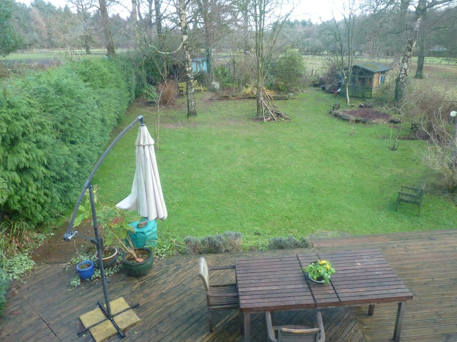 View of large back gardens