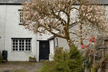 Drws Nesaf,  a small stone cottage - Glynneath - Dom