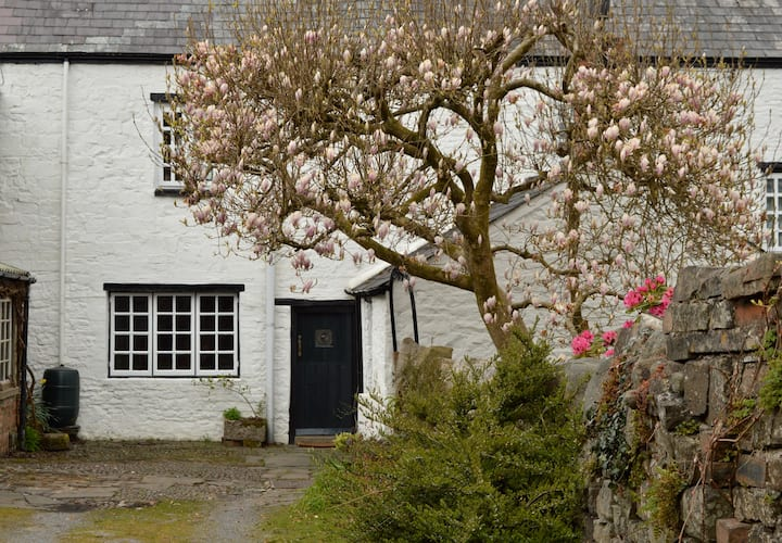 Drws Nesaf,  a small stone cottage