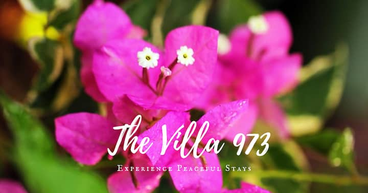 Peaceful stays @ 4BR Villa 5mins to the lighthouse