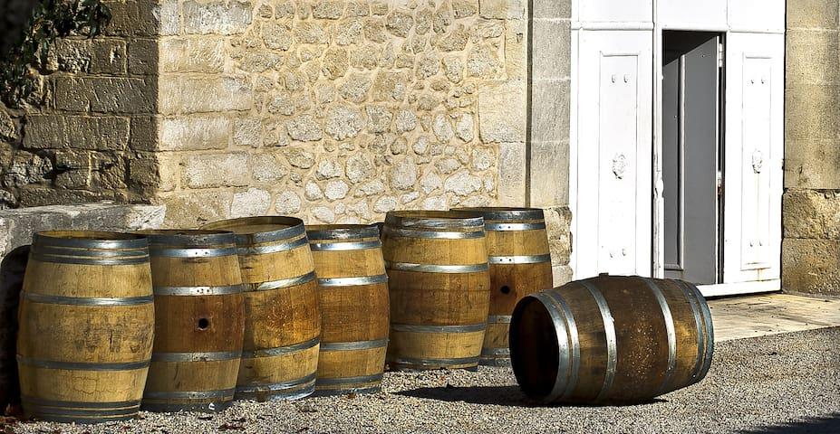 Mas au coeur d'un domaine viticole - Lansargues