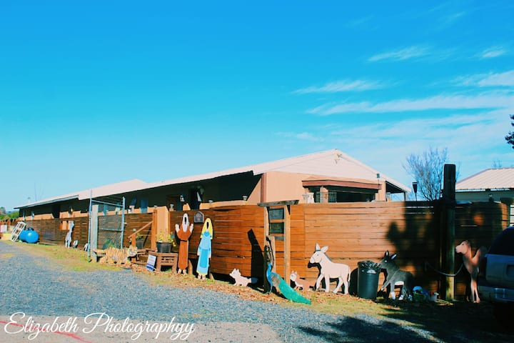 Noah's Ark Cabin #1