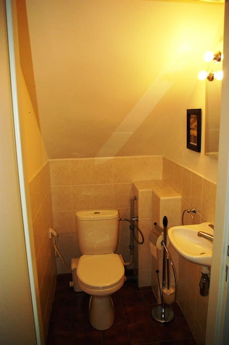 The toilet next to the bedroom