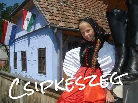 Csipkeszeg B. & B.  in Sic - Romania (Room 1)