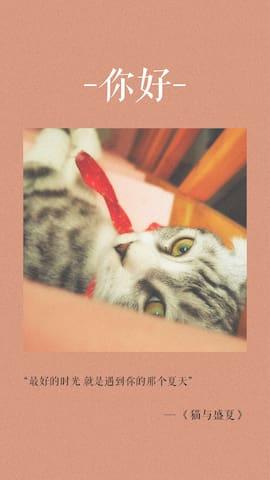 《猫与盛夏》簋街南锣鼓巷东二环阳光胡同Loft【only for girl】