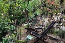 Treetop Terrace