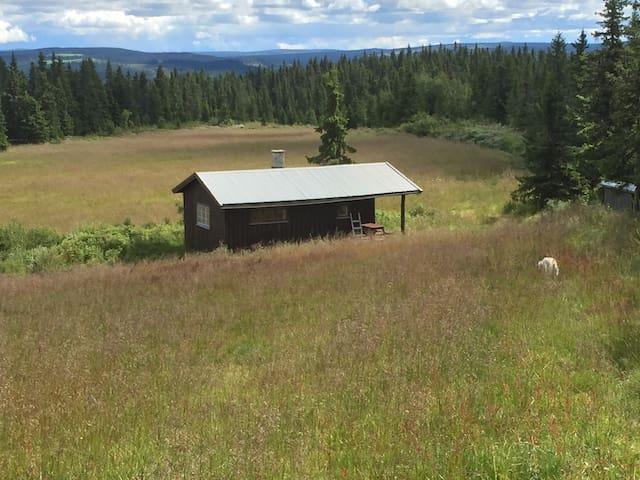 Hytte i rolige omgivelser - Tretten - Cabin