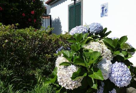 Maravilhosa Casa do Pinheiro - Ponta Delgada
