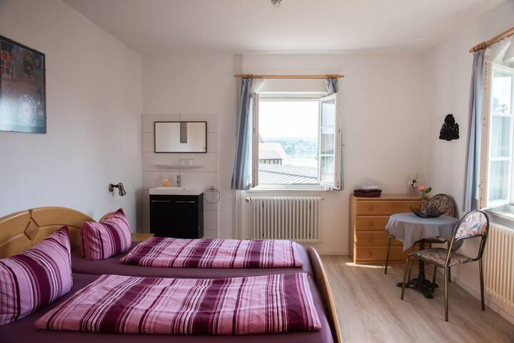 Ferienwohnungen Richard Wurz, (Reichenau), Wohnung 1,  37qm, Terrasse, 1 Schlafzimmer, max. 3 Personen