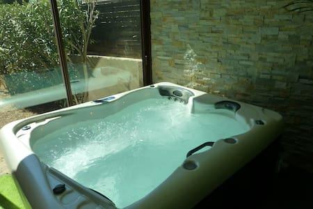 maison avec spa  pour 4 personnes en Provence - Cabrières-d'Avignon - 独立屋