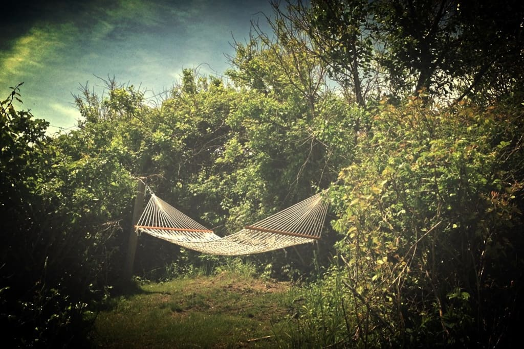 Hammock in the wildflower meadow