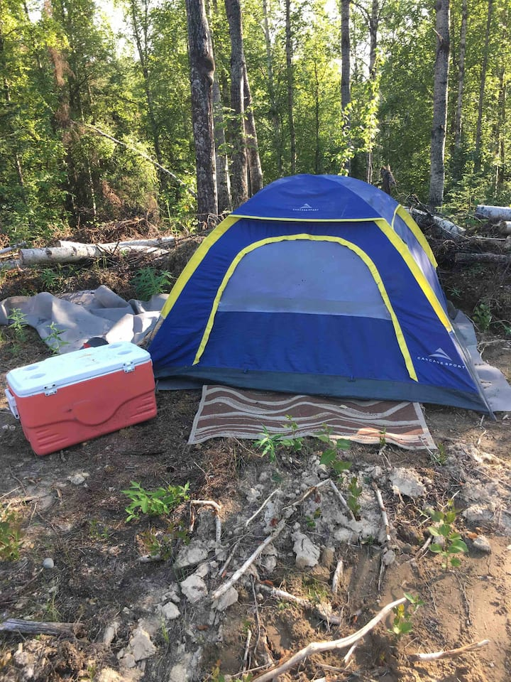 2man tent in willow. Private setting.