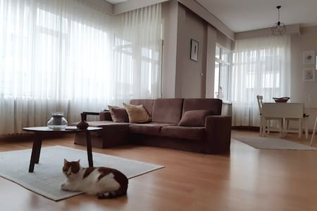 Cozy and spacious flat to enjoy the city