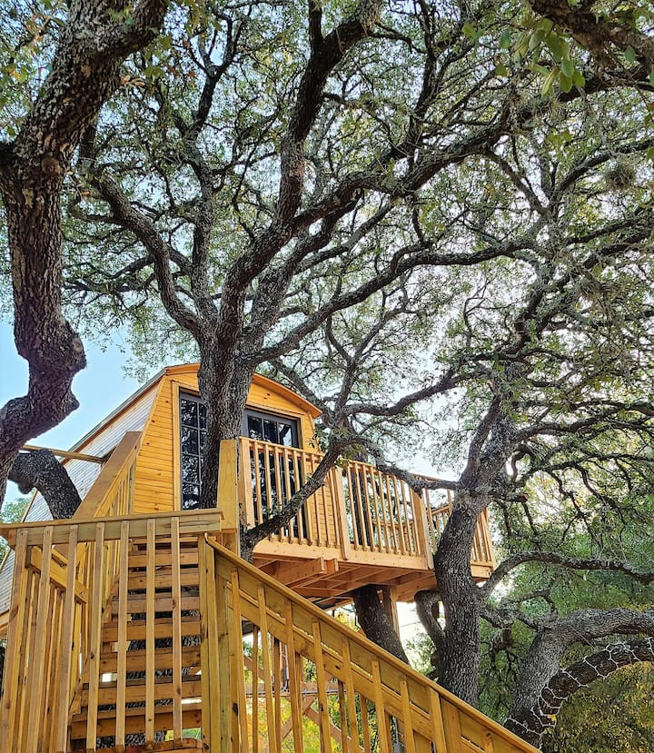 * Cozy Home w/Unique Treehouse in Canyon Lake *