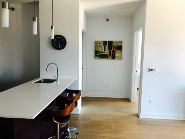 Modern Building On Michigan Ave 1 Bed 1 Bath