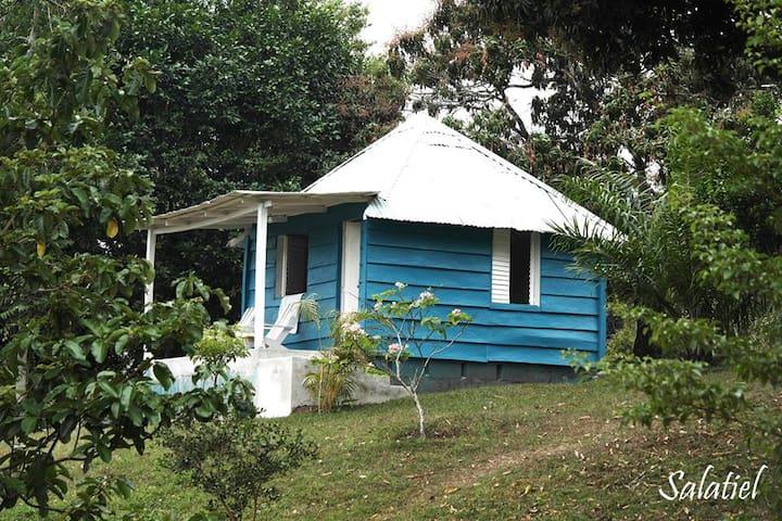 yambigan - San Andrés Tuxtla - Natuur/eco-lodge