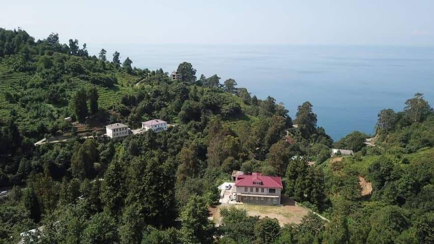Irma&Alik Guest House