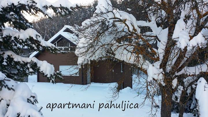 APARTMENTS SNOWBALL - KUPRES