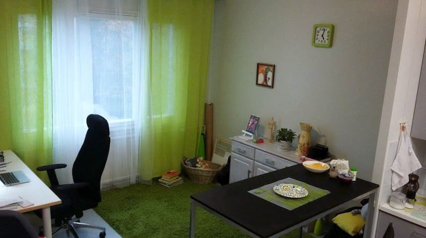 Affordable studio apartment in Skinnarilla, LPR - Lappeenranta - Departamento