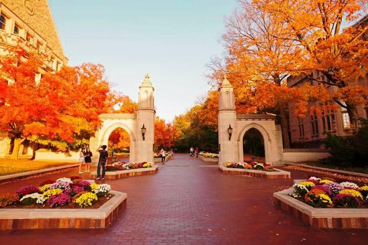 Bloomington 2 Kings on Campus - Walk Everywhere!