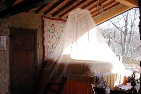 Romantica casa nel bosco - Roccatederighi