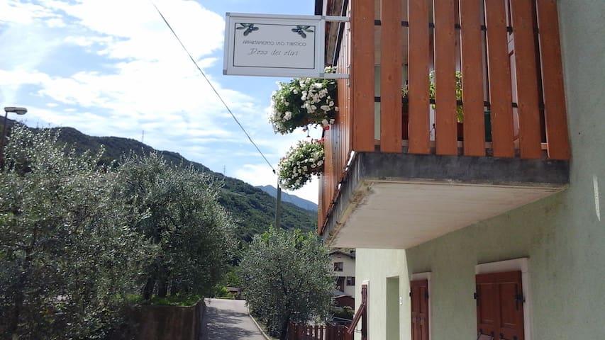 appartamento DOSS DEI OLIVI - Pergolese - Apartment