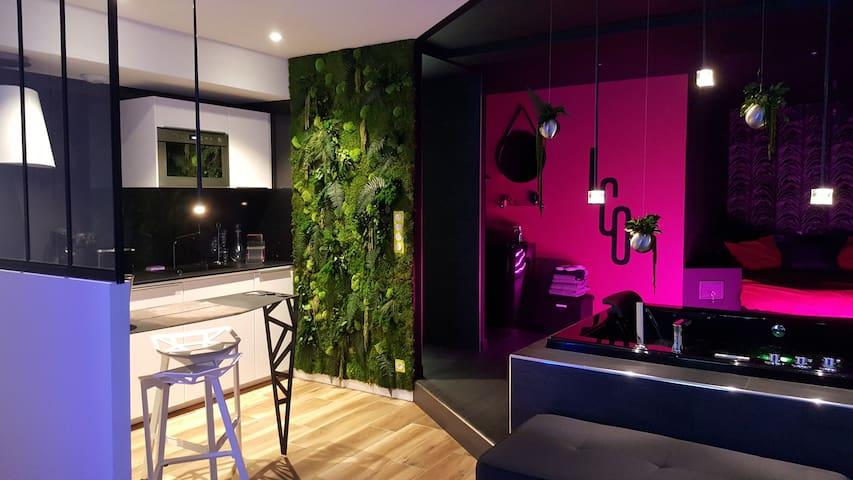 Le Clair Obscur, appartement romantique de luxe