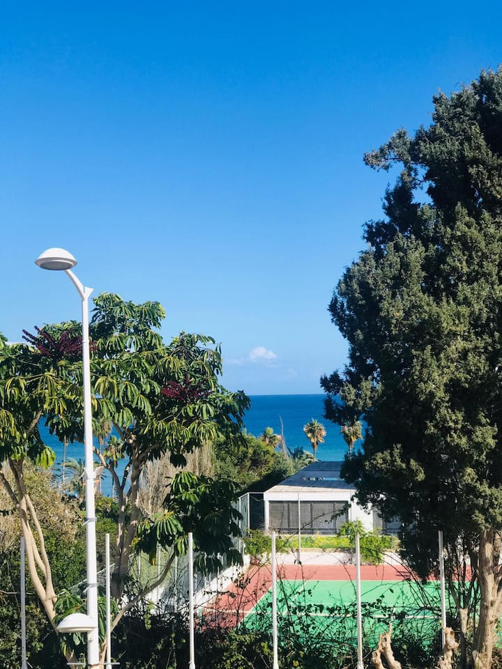 2 bedroom seaview apartment - 100m from the sea