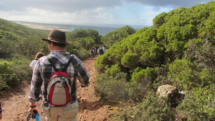 Wonderful trails