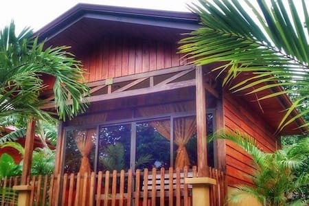 Our Bungalows are built in wood type individual cabins, surrounded by nature and beautiful gardens where you can enjoy a variety of birds beautify the place. Wide open internal and exterior space to make your comfort and enjoy be our presentation letter.