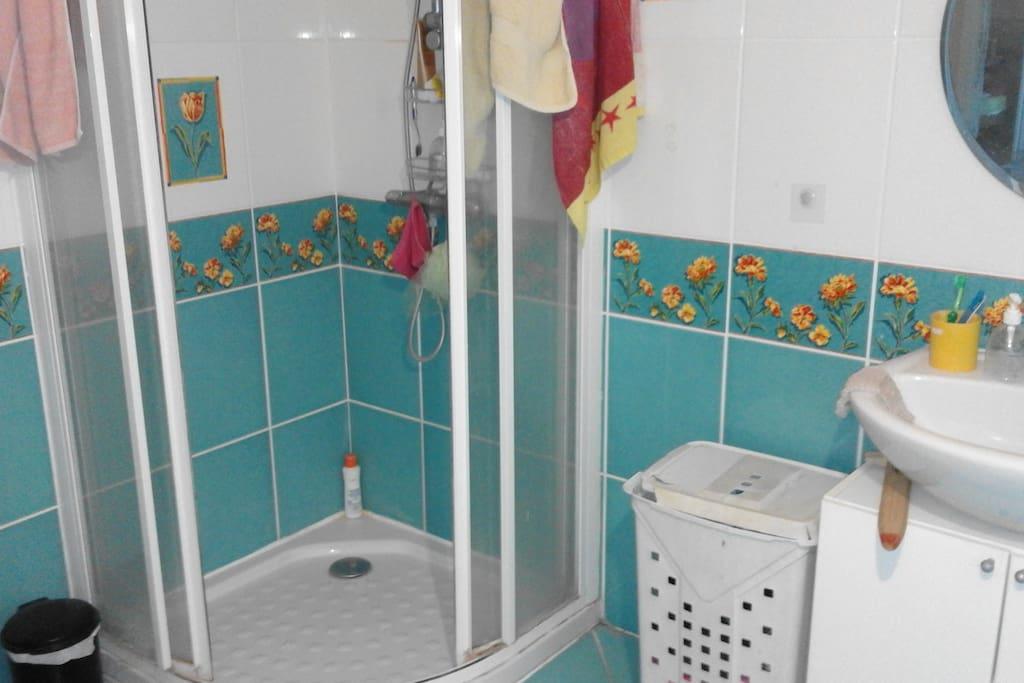 Seconde douche en plus de la baignoire