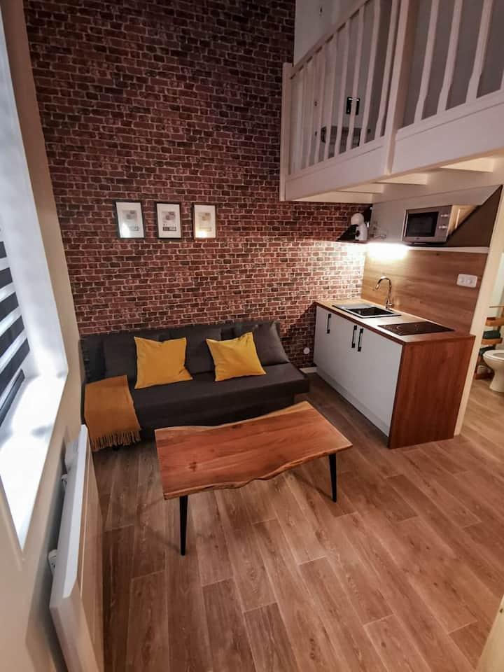 Studio cosy en plein cœur du vieux Lille