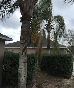 3 nearby houses. 3/2 each CLEAN. - Spring Hill - House