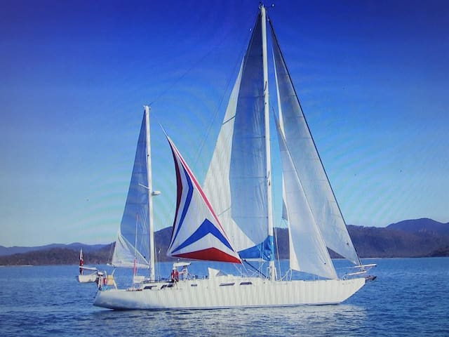 Life, adventure and experience on a sail boat. - Cammeray - Boot